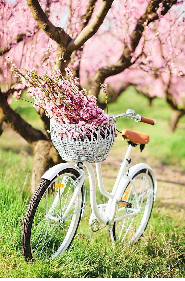 bike-reuse-ideas14